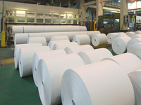 Offset Paper / Woodfree Paper